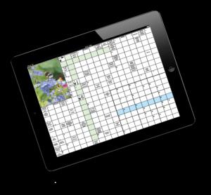 Digitalt korsord på en Ipad